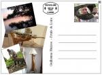 cartepostalefruitsdeloire
