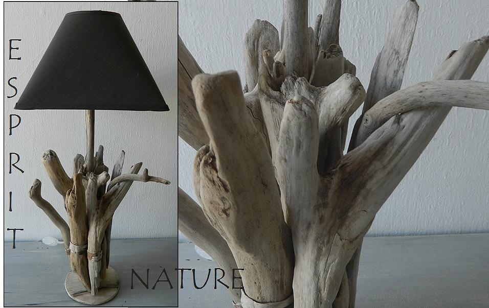lampe2009