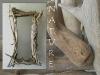 miroir2005